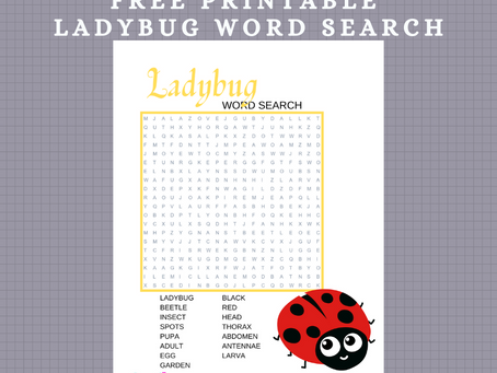 Ladybug Word Search | Free Printable Ladybug Themed Activity Sheet | Ladybug Word Find for Children