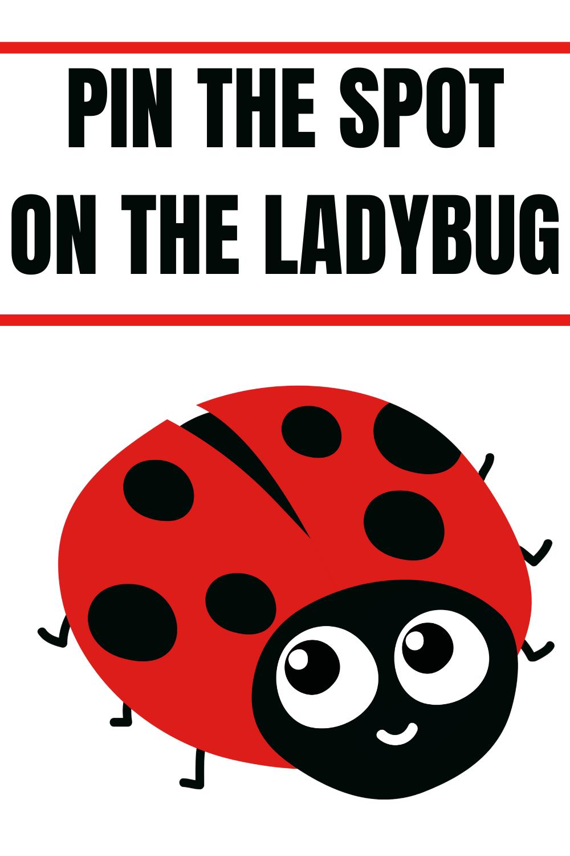 ladybug birthday party decorations ideas for kids