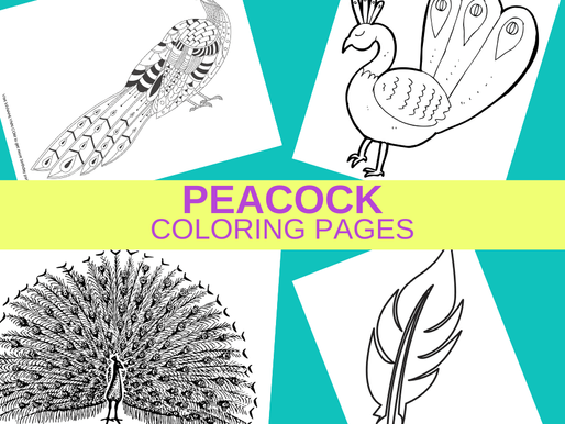 Printable Peacock Coloring Pages - Free to Print and Color Now!