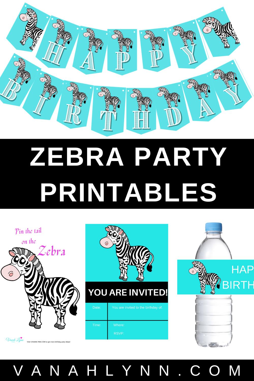 zebra birthday party supplies for home birthday
