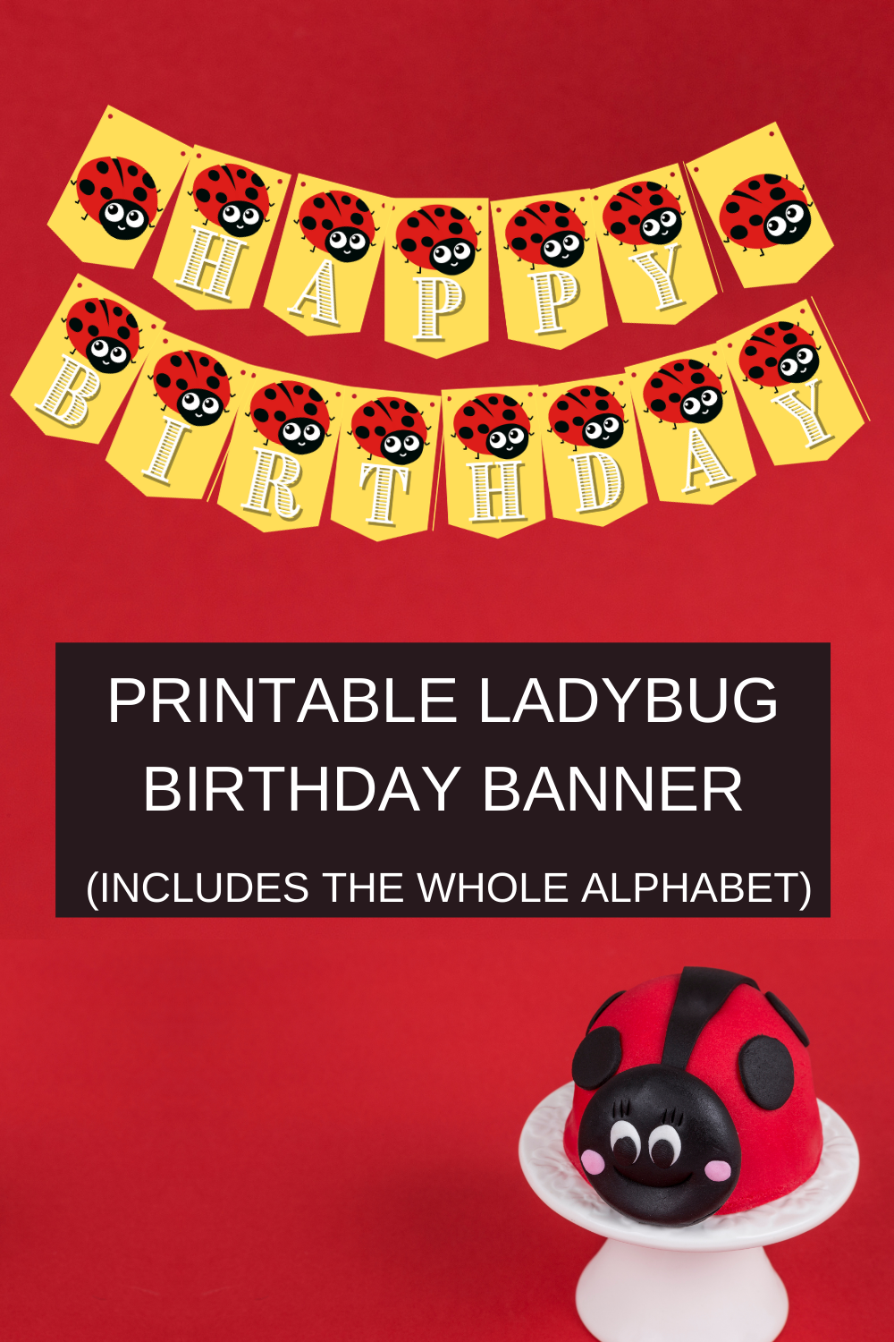 first birthday ladybug decorations for little girl