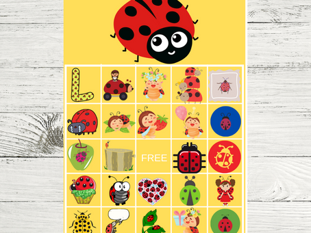 Ladybug Bingo | Ladybug Themed Party Game Idea | Ladybug Birthday Party Activity