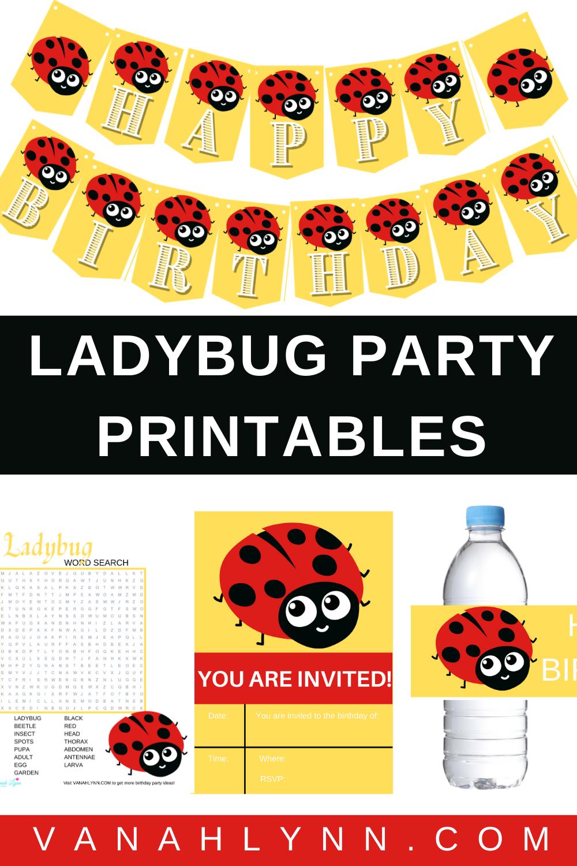 ladybug 1st birthday party decorations