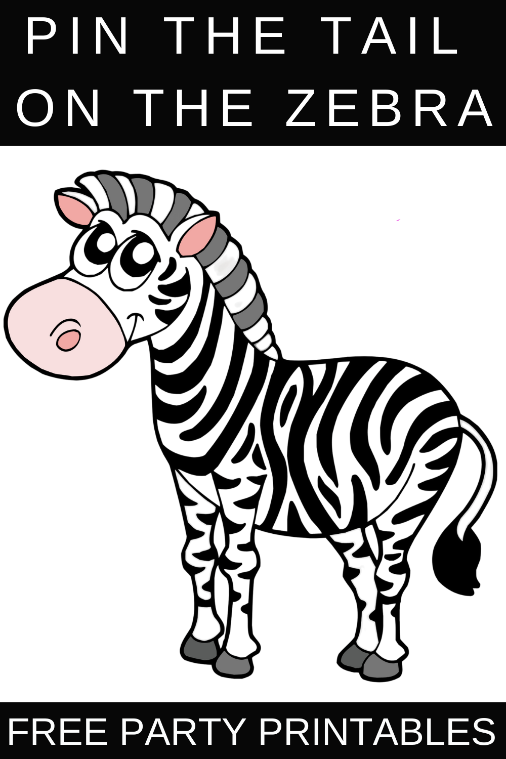 zebra birthday party ideas for kids