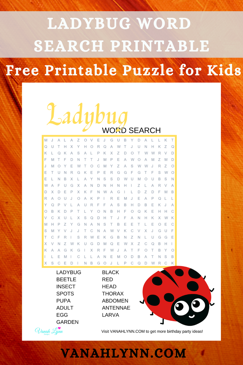 ladybug themed game for kids birthday party
