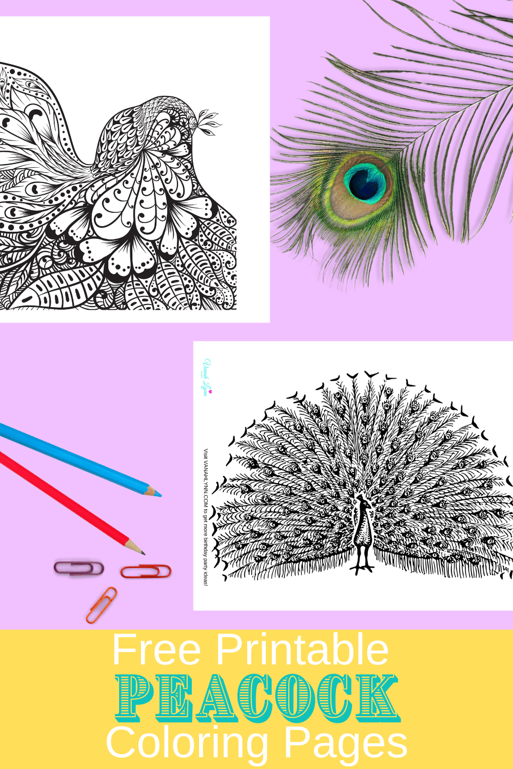cute peacock coloring pages