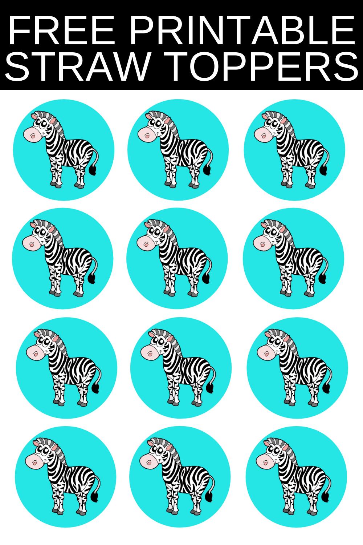 zebra birthday party ideas for kids