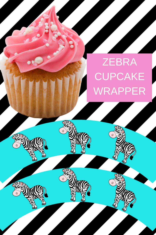 zebra first birthday party ideas for little girls