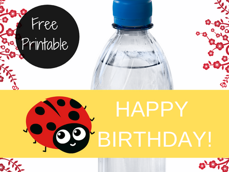 Ladybug Water Bottle Label | Free Printable Ladybug Birthday Party Ideas | DIY Ladybug Party Décor