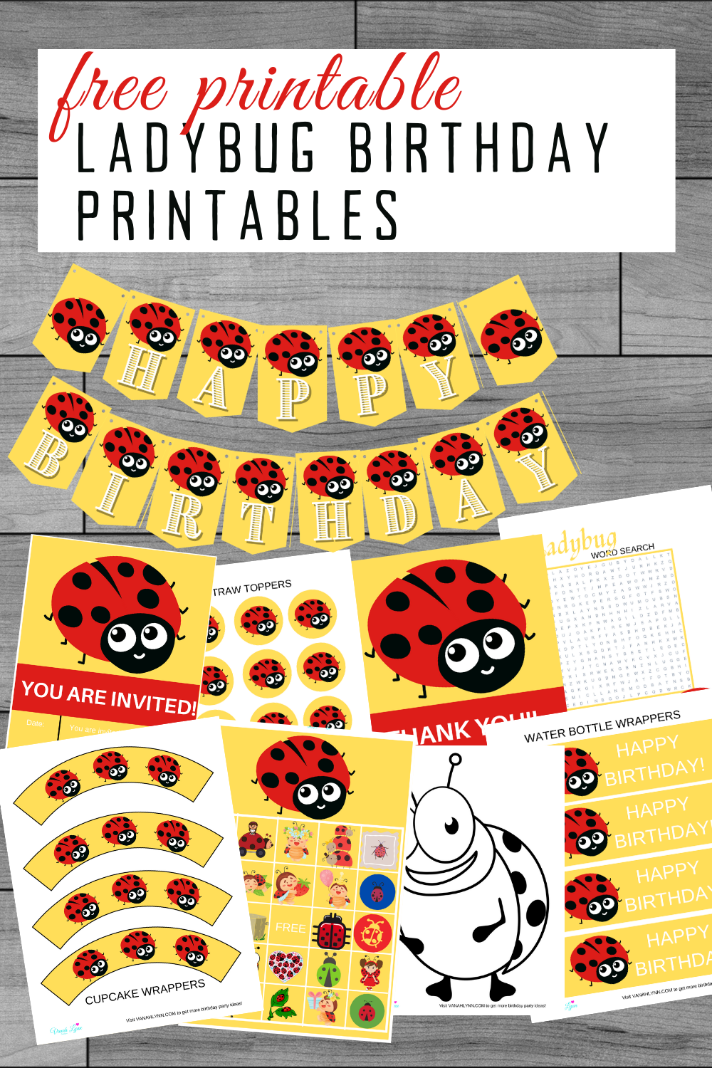 ladybug birthday party ideas and games