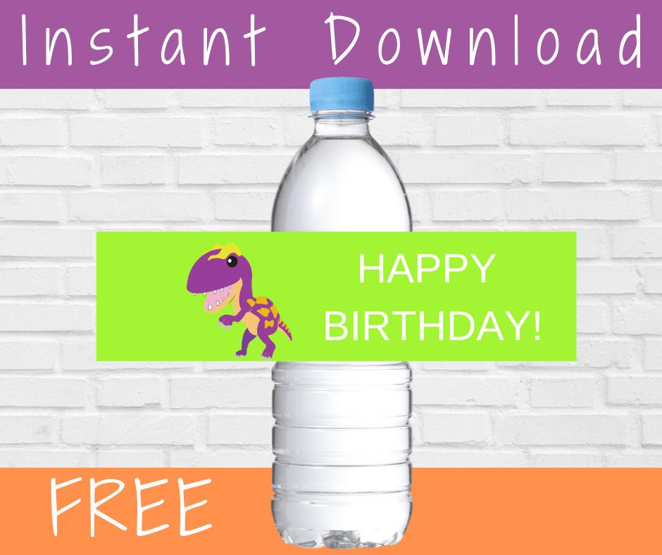 dinosaur birthday theme decorations - water bottle labels