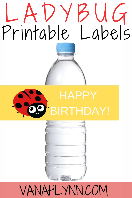 free download: ladybug birthday party decorations