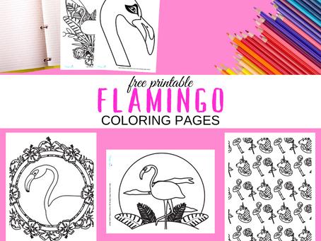 Flamingo Coloring Pages | Free Printable Flamingo Activity Sheets | Flamingo Birthday Party Ideas