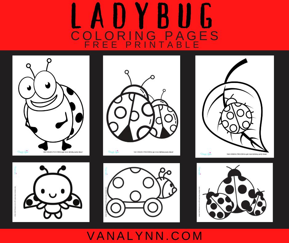 ladybug printable coloring pages