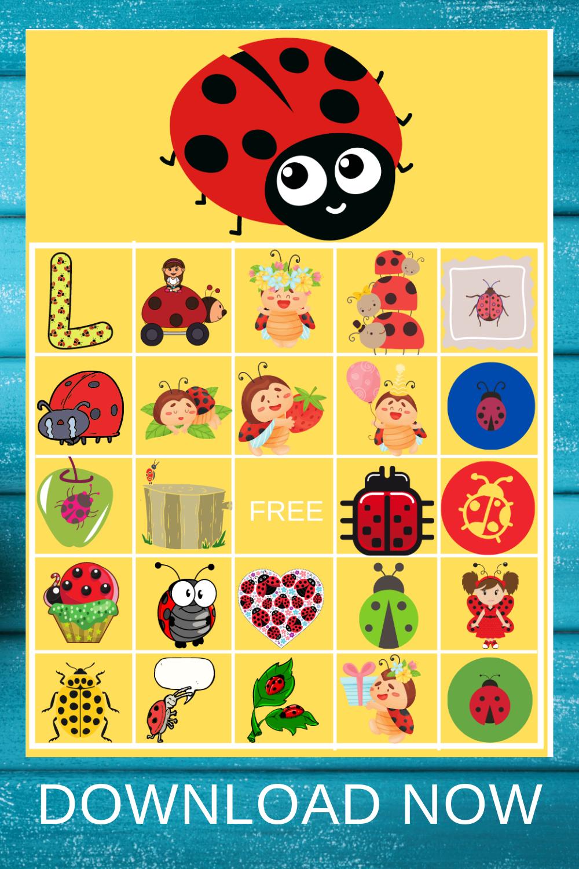 ladybug birthday party ideas for preschoolers