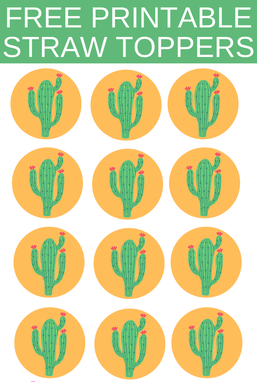 cactus first birthday party ideas for kids