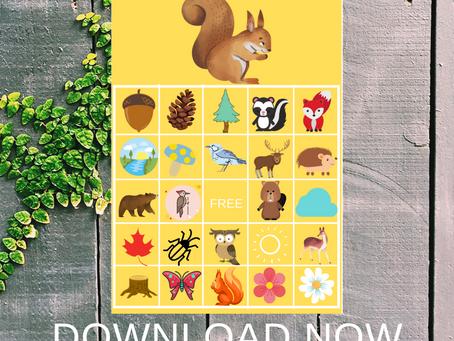 Woodland Bingo | Woodland Themed Party Game Ideas | Woodland Birthday Party Activity