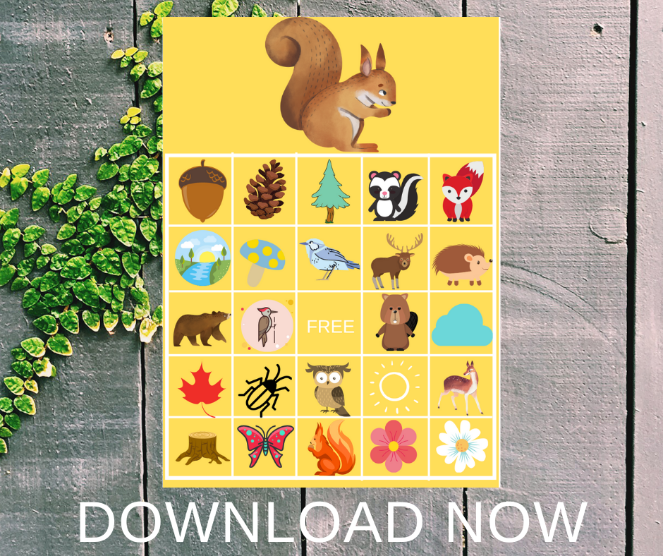 Woodland Bingo game for a woodland themed birthday party