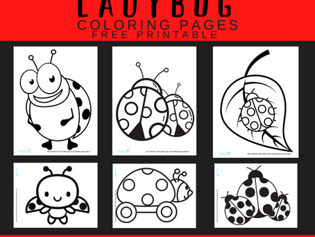 Ladybug Coloring Pages | Free Printable Ladybug Activity Sheets | Ladybug Themed Birthday Party Idea