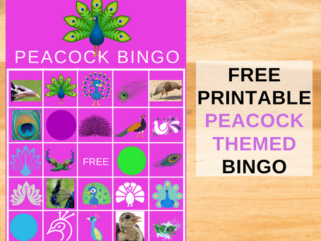 Peacock Bingo | Free Printable Birthday Party Games