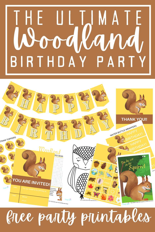 woodland animal birthday party ideas