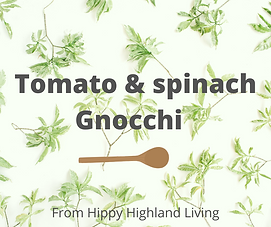 Tomato & spinach gnocchi .png