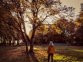 8 wholesome eco-friendly autumn activities you need to try this season