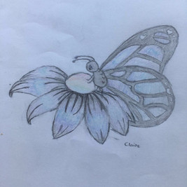 Claire Cao butterfly.jpg