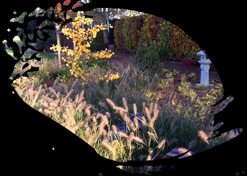 Namur entreprise jardin
