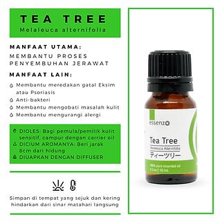 tea tree baru (1).png