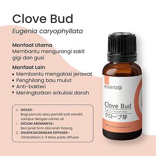 Clove Bud 2.png