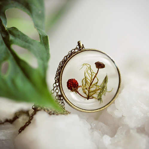 Tiny Mushroom, fern & Dried Strawberry Pendants