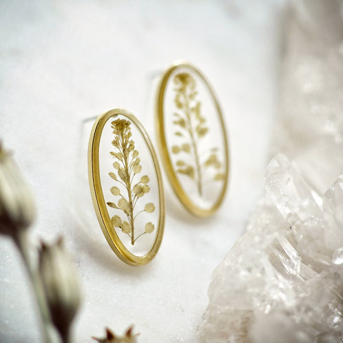 Pressed Botanical Oval Post Earrings