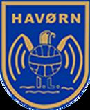 Havørn-Logo.png