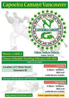 Schelude Capoeira Classes