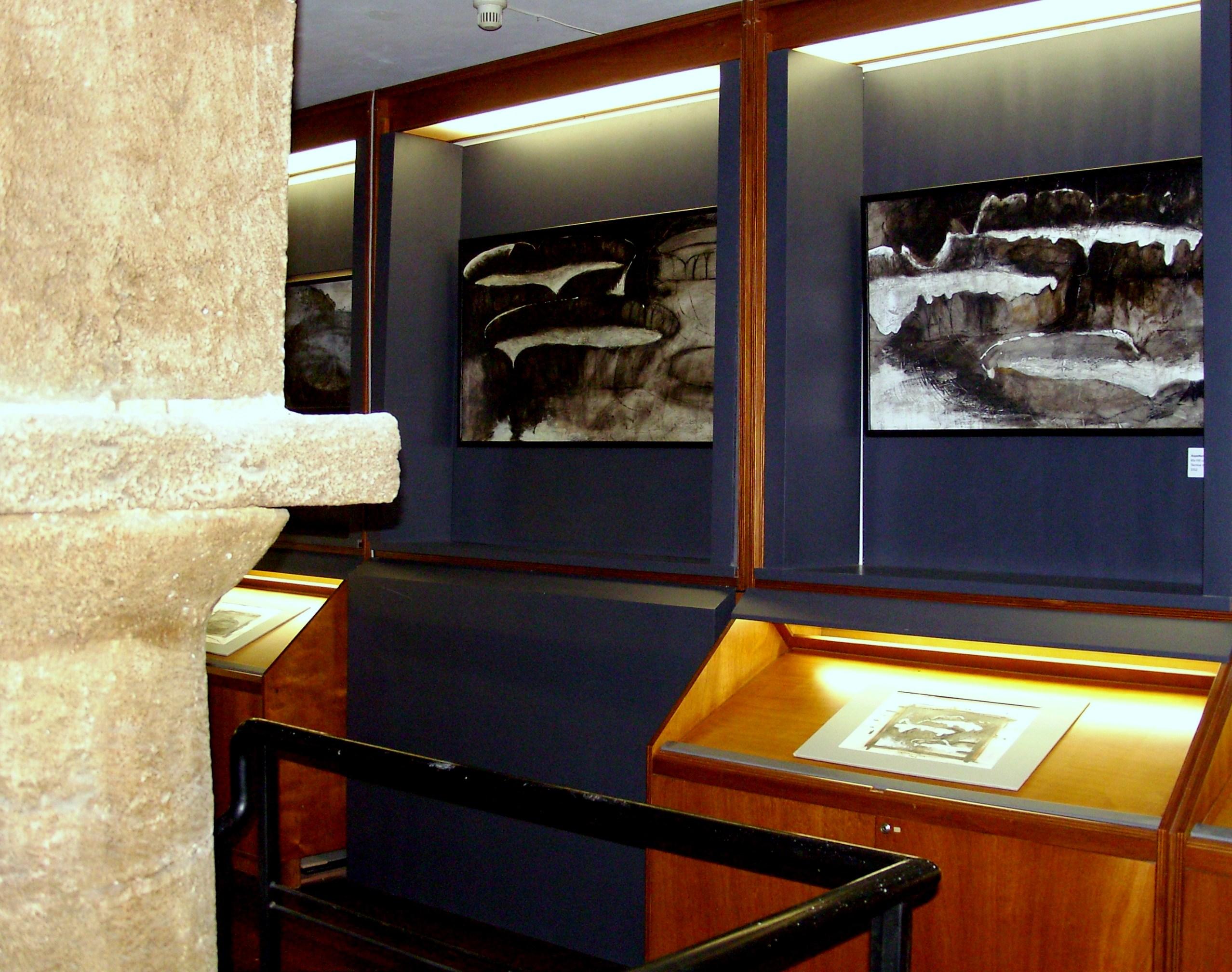 Mostra Orto botanico, Palermo, Sala Giuseppe e Vincenzo Tineo, 2010