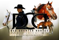 DCD Quarter Horses