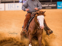 Equitana Australia Open Reining 2018