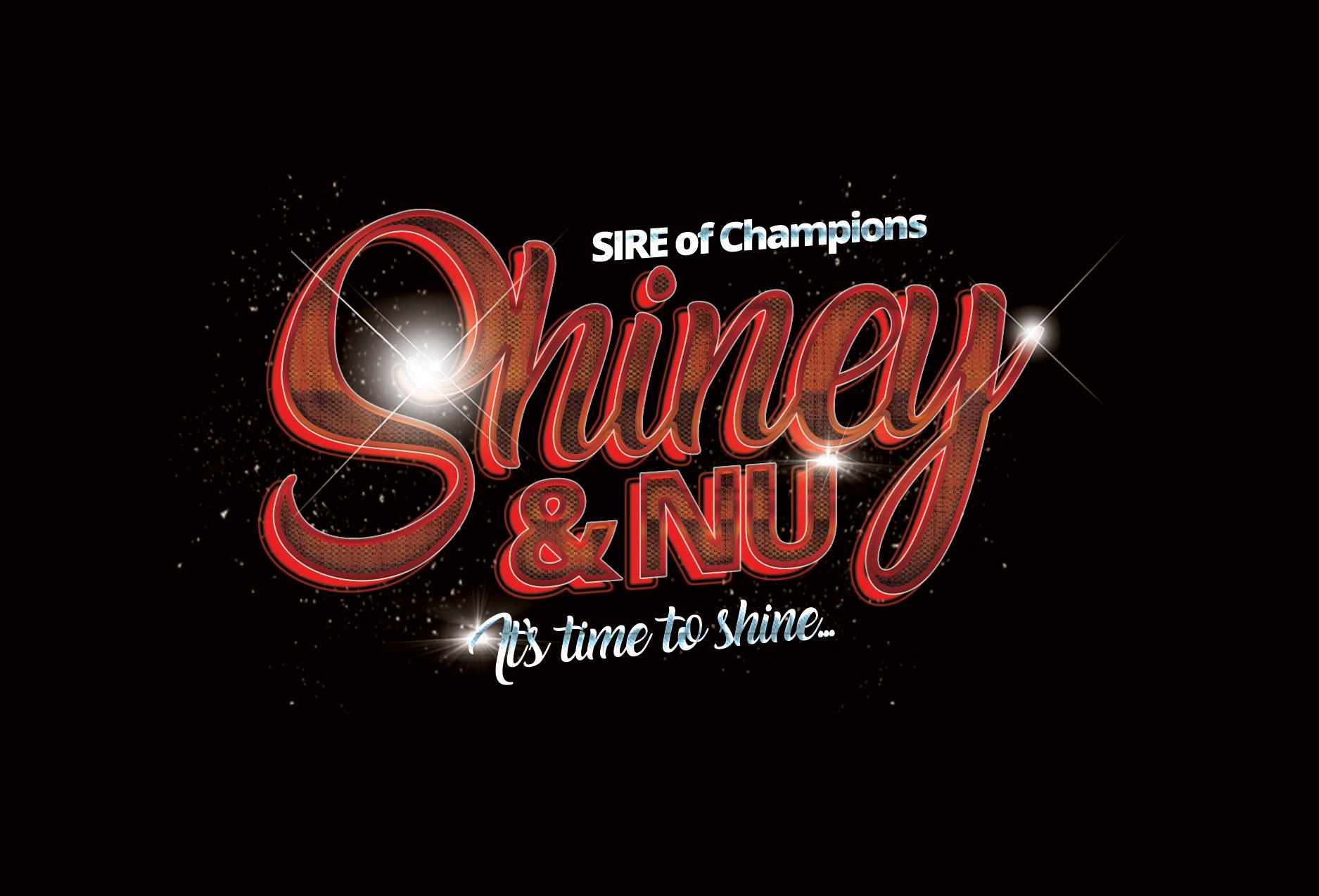 Shiney & Nu