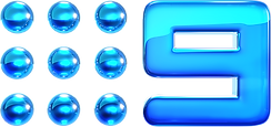 Nine2012_Glossed_Logo.png