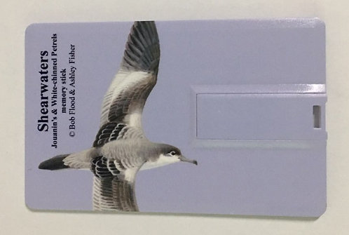 Multimedia Identification Guide: Shearwaters (Memory Stick only)