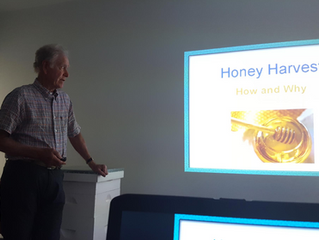 Hives, Research, and Honey!