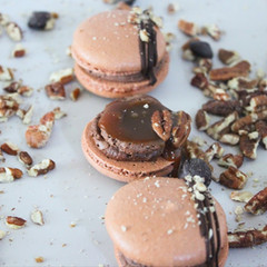 occasionsbyannie-chocolate-turtle-french