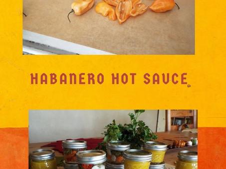 Liz's Habanero Hot Sauce