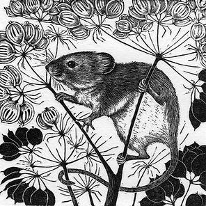 Harvest Mouse 60x60mm.jpg