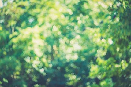 GettyImages-1050088900.jpg