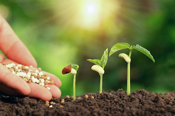 Synthetic-Organic-Fertilizer.jpg