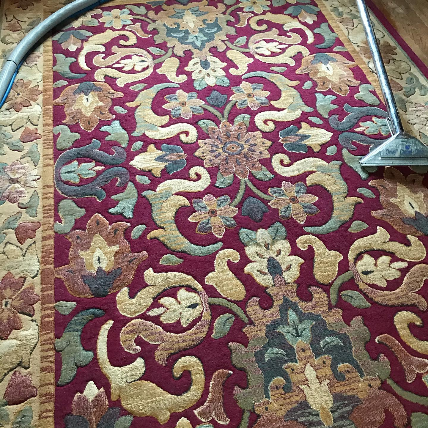Rug Cleaning Orwell Carpet Care