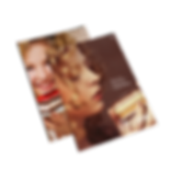 folder_lapa.png