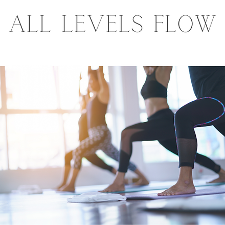 Yoga Flow All Levels.png